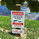 Critical PR Lessons from Alligator Tweet by Disney Intern