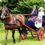 PR & Journalism Horse and Buggy Ideas That Should Be Ditched